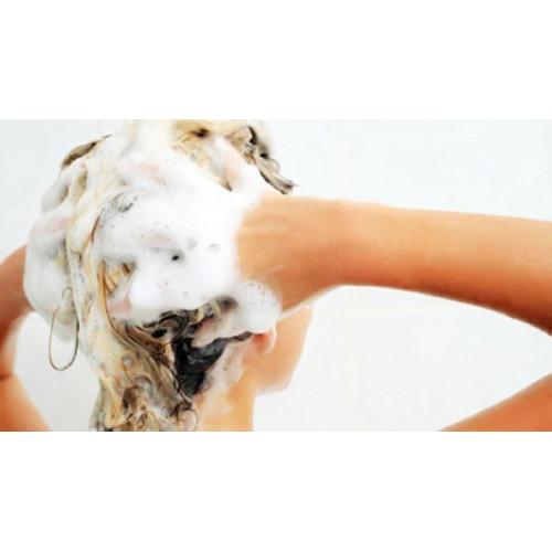 Šampūns ar lizolecitīnu, normāliem matiem